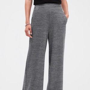 NWT banana Republic wise leg knit pants Sz Large